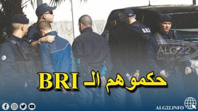 صورة توقيف 11 شخصا خلال حرب عصابات ببواسماعيل في تيبازة