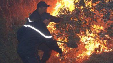 صورة هذه هي نتائج تحقيقات الحرائق الٱخيرة