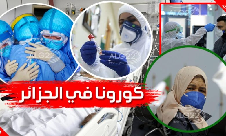 صورة كورونا في الجزائر: 204 إصابة جديدة و 7 وفيات
