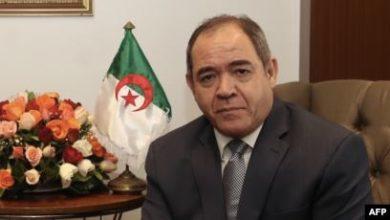 """صورة بوقدوم:"""" المحميات الطبيعية تغطي 45% من الجزائر"""""""