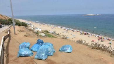 صورة 123 طن من النفايات خلّفها المصطافون خلال 20 يوما بشواطئ العاصمة