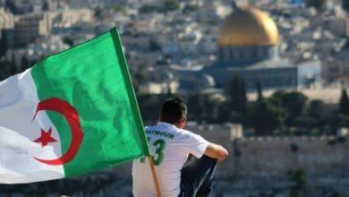 صورة حركة حماس تثمن تصريحات الرئيس تبون بشأن التطبيع