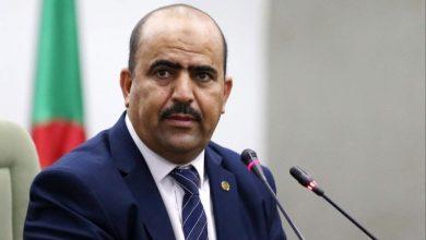 صورة شنين: الجيش تصدى لكل محاولات المساس بأمن الجزائر