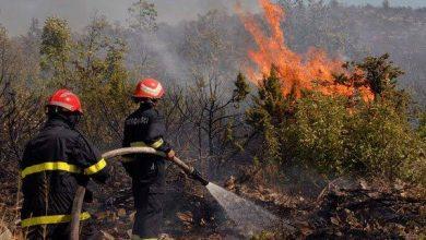 صورة حرائق الغابات تخلف ضحيتين بتيبازة وتتلف عديد الهكتارات بعدد من مناطق الوطن