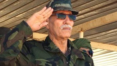 صورة ابراهيم غالي يعلن رسميا نهاية الالتزام بوقف إطلاق النار