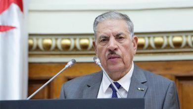 صورة قوجيل: الجزائر في حرب إعلامية ونتمني عودة رئيس الجمهورية قريبا