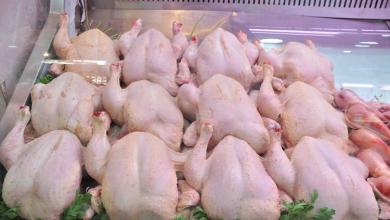 صورة هذا هو السبب وراء ارتفاع أسعار الدجاج