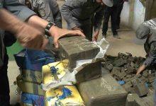"""صورة الجمارك: حجز أزيد من 16 طنا من """"الزطلة"""" و18 كلغ من الكوكايين أغلبها من المغرب في سنة 2020"""