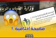 صورة الإدارة تلتزم الصمت..فهل يتحرك الوزير خالدي بعد الفضيحة الأخلاقية التي هزت القطاع ؟