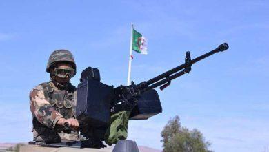 صورة وحدات الجيش الوطني الشعبي تتمكن من القضاء على 4 إرهابيين بتيبازة