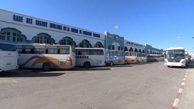 صورة بسة: استئناف رحلات النقل البري سيكون متوفرا بكافة الخطوط عبر الوطن