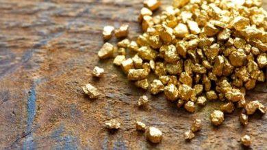 صورة عرقاب: الجزائر تنام على مخزون وطني كبير من الذهب يقدر بـ 124 طن