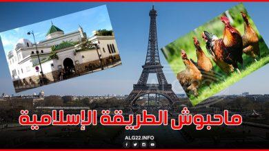 """صورة فرنسا تمنع """"الذبح الحلال"""" ومساجد ترفض"""