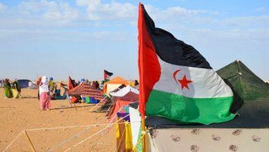 صورة برلمانية بريطانية تساءل حكومة بلادها حول تنظيم استفتاء تقرير المصير في الصحراء الغربية