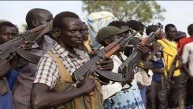 صورة تشاد: سقوط 100 قتيل إثر اشتباكات قبلية جنوب البلاد