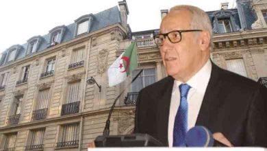صورة برمجـة 5 رحلات جوية بين الجزائر وفرنسا بداية من شهر جوان القادم